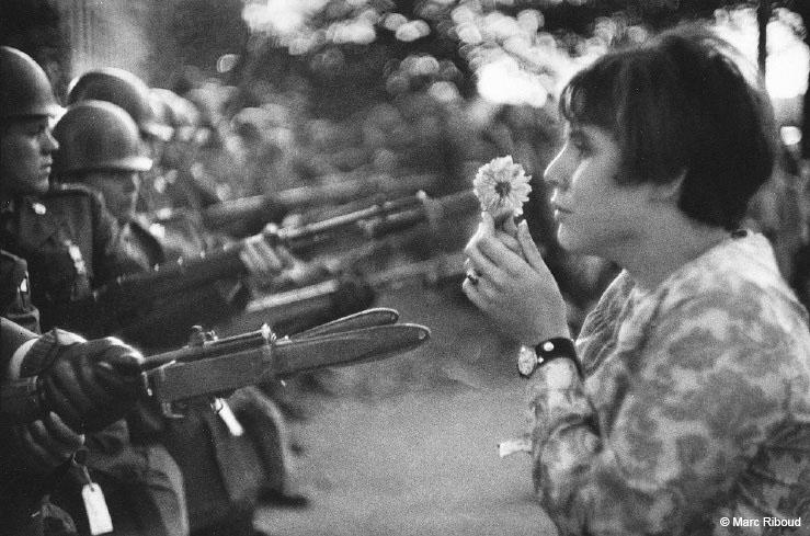 zieda speks vjetnamas kara laika