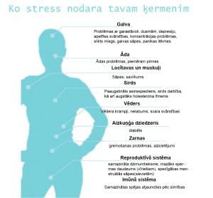 ko stress nodara tavam ķermenim