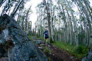 skriešana pa mežu